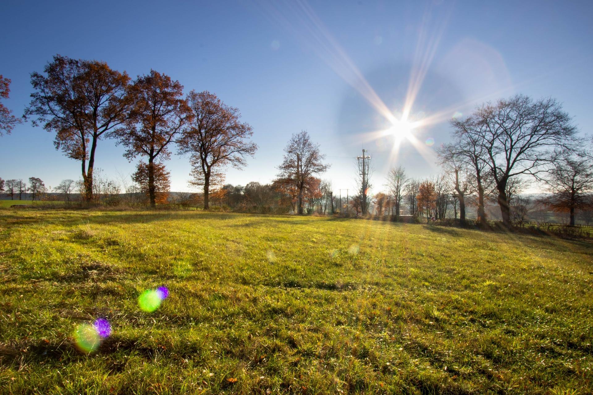 Grundstück  in Wallerode